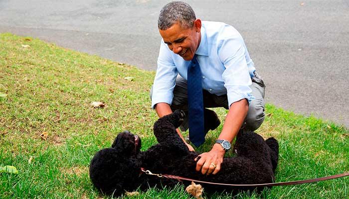 Obama brinca com seu cachorro Bo, quando ainda era presidente dos EUA: trabalho nas redes para se aproximar do cidadão comum - Foto: divulgação